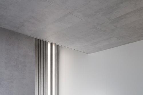 Ceiling Raw Concrete